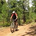 Buffalo Creek, COLORADO TRAIL: CO-126 to Meadows Campground Saturday, April 28, 2012